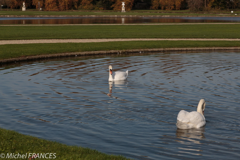 Chantilly_octobre14_09.jpg